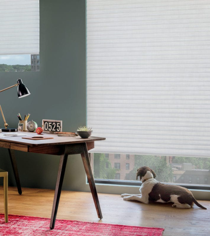 cordless solution home office cellular roller shades