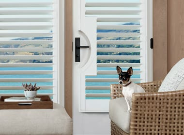 white shutters on french doors with handle cutouts in Friendswood TX