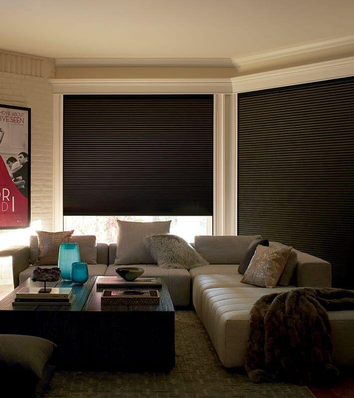 room darkening blinds seal off light in living room Baybrook TX