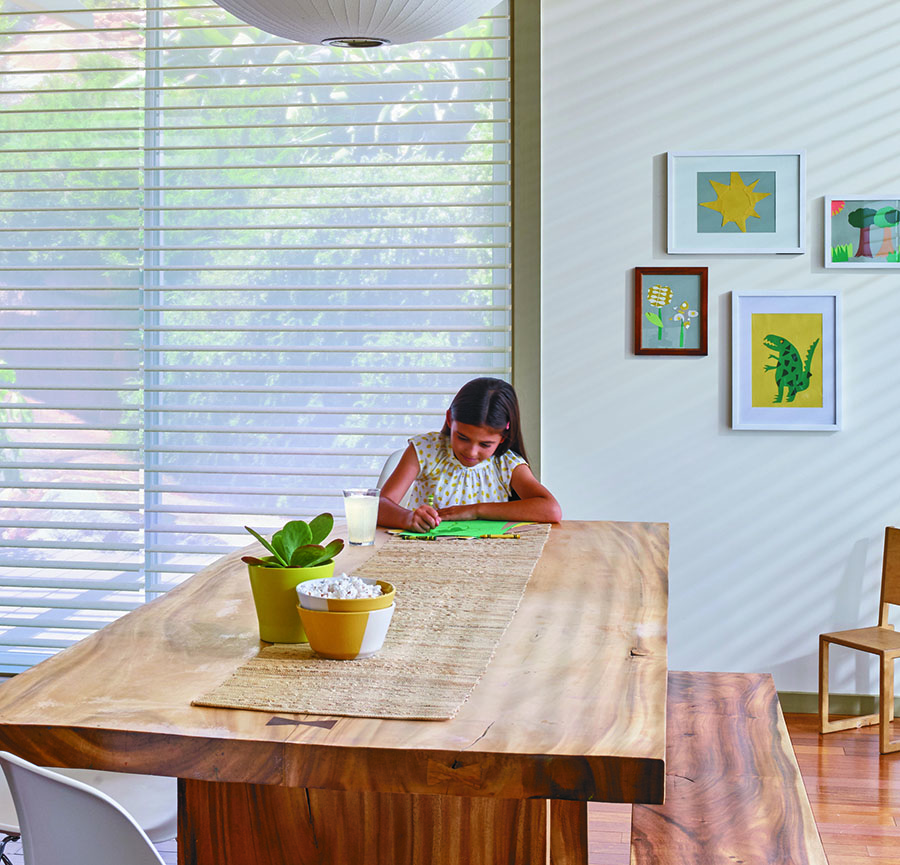 smart shades offer lighting for remote learning in houston TX