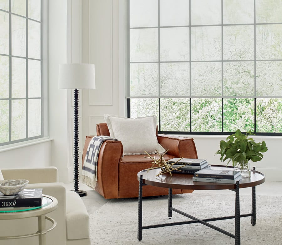 contemporary roller shades in large window of Friendswood TX living room