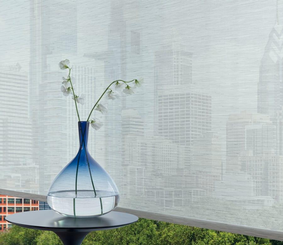 designer roller screen shade city view in houston TX