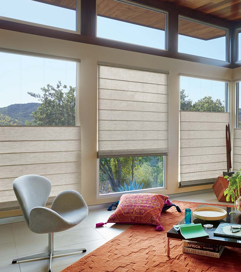 large windows with adjustable woven roman shades in Memorial TX