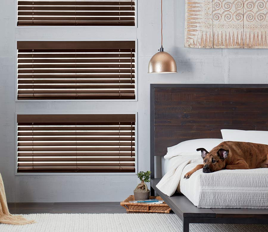 wood blinds in gray modern bedroom with dog on the bed